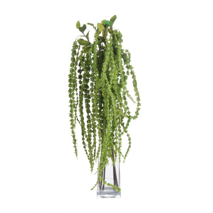 Green Amaranthus - Cosy Home Interiors