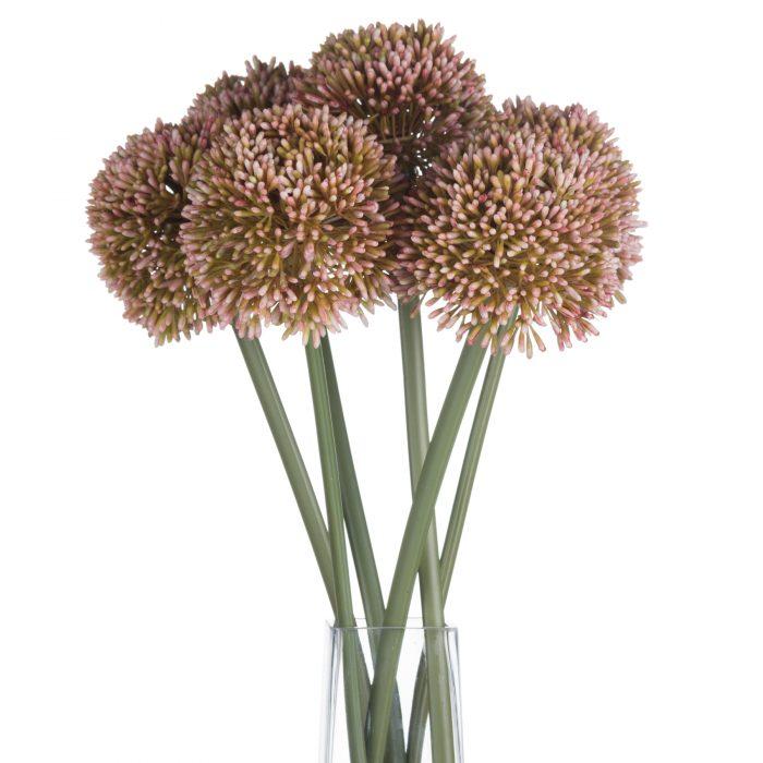 Pink Allium - Cosy Home Interiors