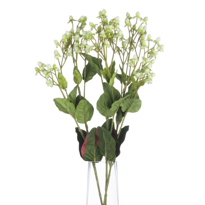 Variegated Green Brown Hypericum - Cosy Home Interiors