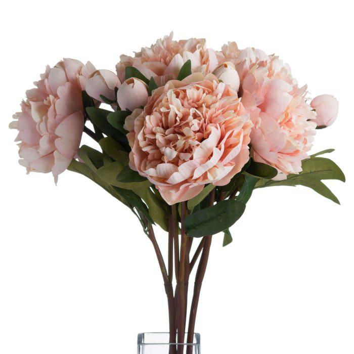 Peach Peony Rose - Cosy Home Interiors