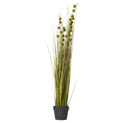 Tall Seed Grass Pot - Cosy Home Interiors