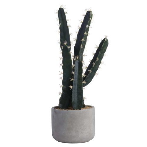 Large Concrete Potted Cactus - Cosy Home Interiors