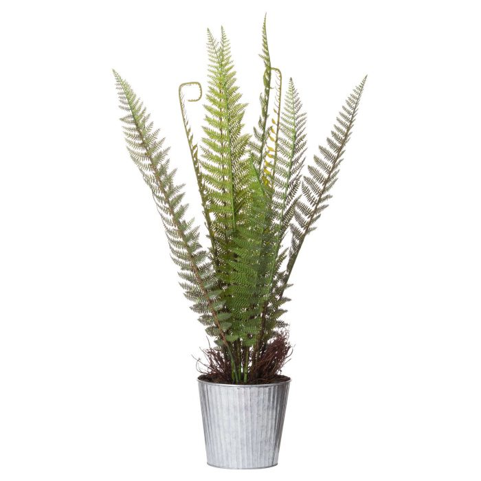Tall Potted Fern - Cosy Home Interiors