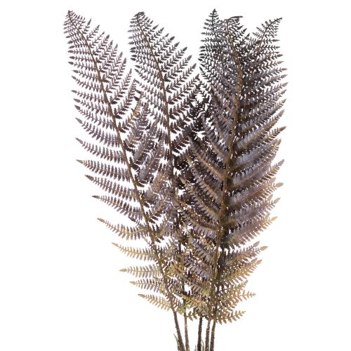 Single Brown Fern Leaf - Cosy Home Interiors