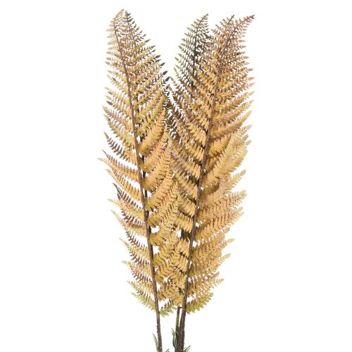 Single Autum Fern Stem - Cosy Home Interiors