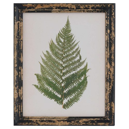 Rustic Framed Botanical Fern Picture - Cosy Home Interiors