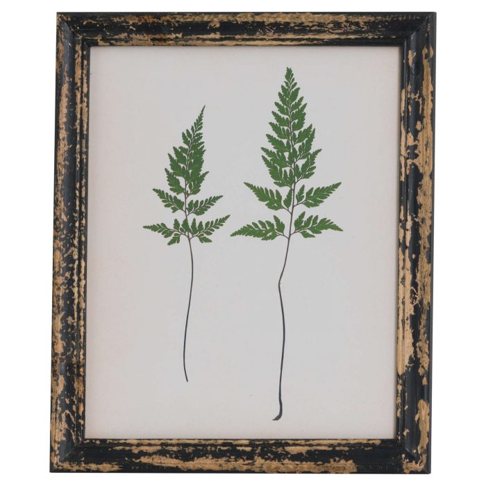 Rustic Framed Botanical Pair Of Ferns Picture - Cosy Home Interiors