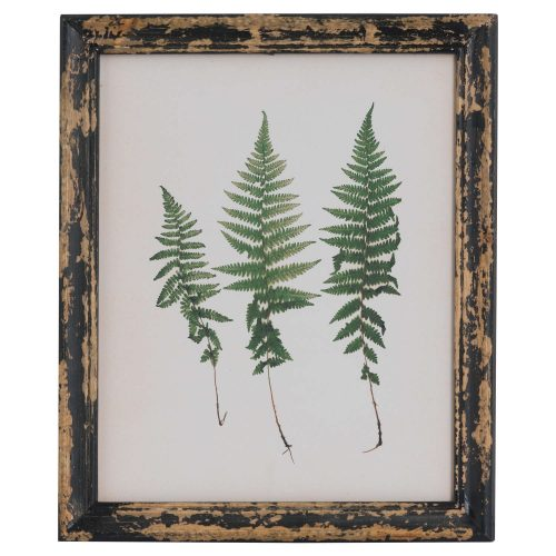 Rustic Framed Botanical Triple Fern Picture - Cosy Home Interiors