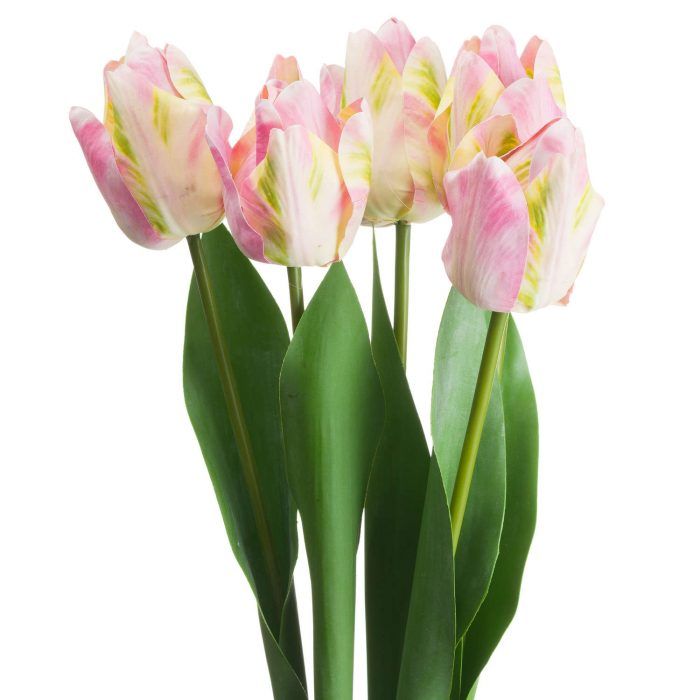 Pink & Green Tulip - Cosy Home Interiors