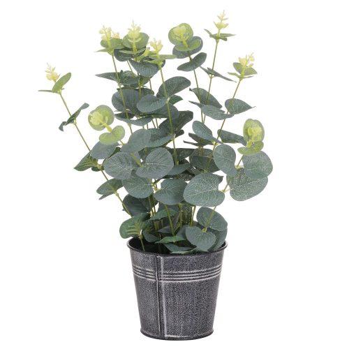 Eucalyptus In Tin Pot - Cosy Home Interiors