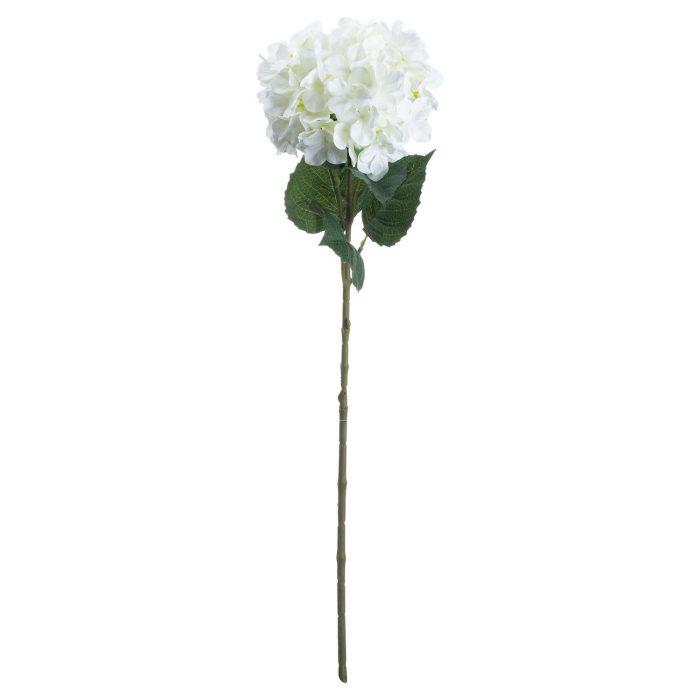Single White Hydrangea - Cosy Home Interiors