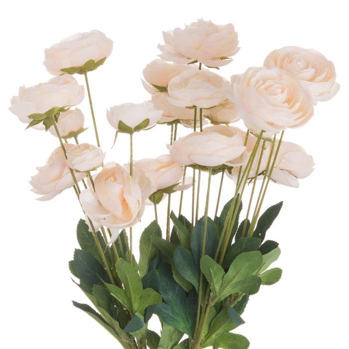 Cream Ranunculus - Cosy Home Interiors