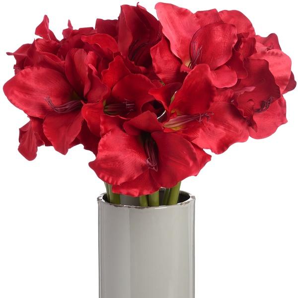 Red Amaryllis Stem - Cosy Home Interiors