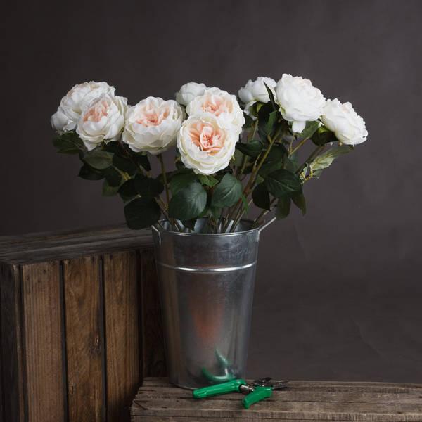 Blush Garden Rose - Cosy Home Interiors