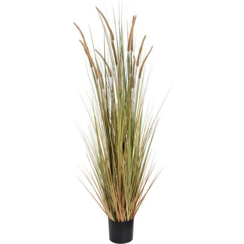 Field Grass Pot 60 Inch - Cosy Home Interiors