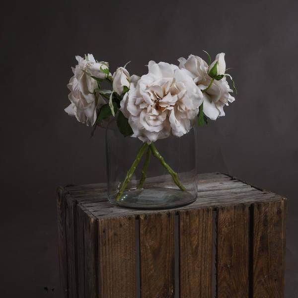 White Short Stem Rose - Cosy Home Interiors