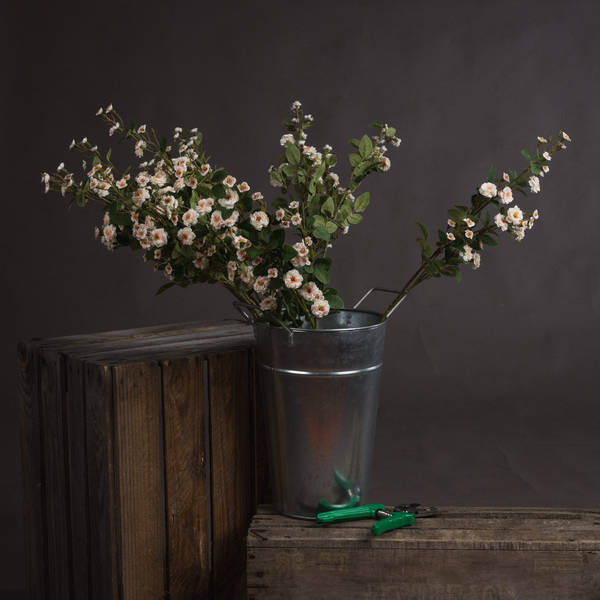 Cream Wild Meadow Rose - Cosy Home Interiors
