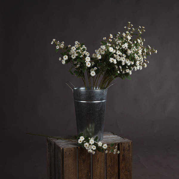 White Wild Meadow Rose - Cosy Home Interiors