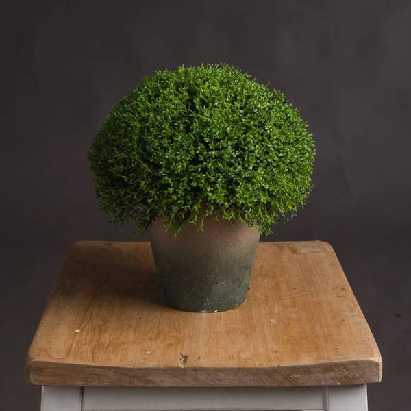 Hebe Globe Pot - Cosy Home Interiors