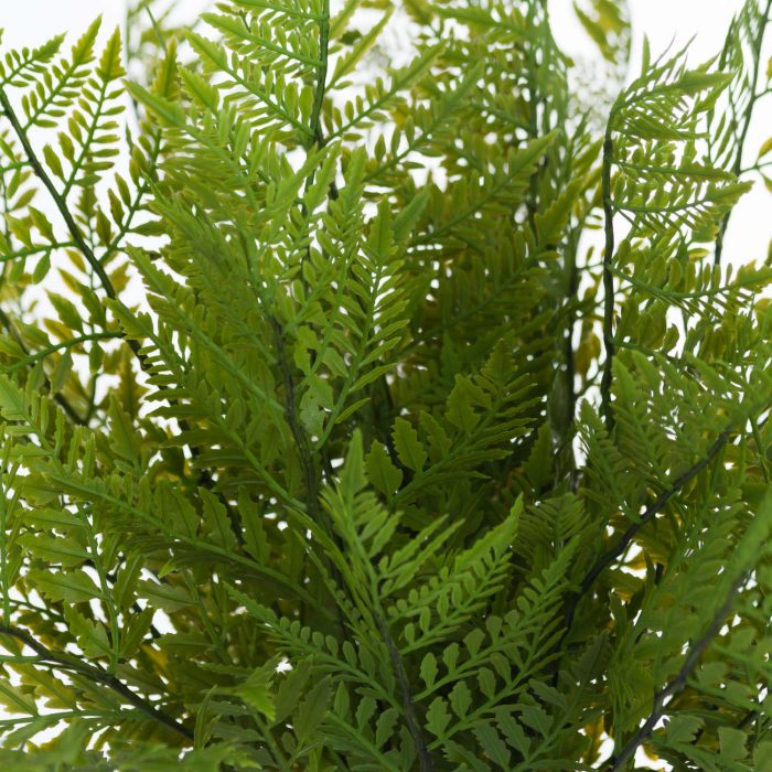 Green Fern Bunch - Cosy Home Interiors