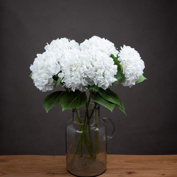 White Classic Hydrangea - Cosy Home Interiors