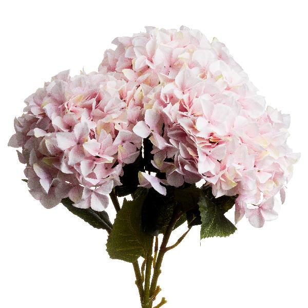 Single Pink Hydrangea - Cosy Home Interiors