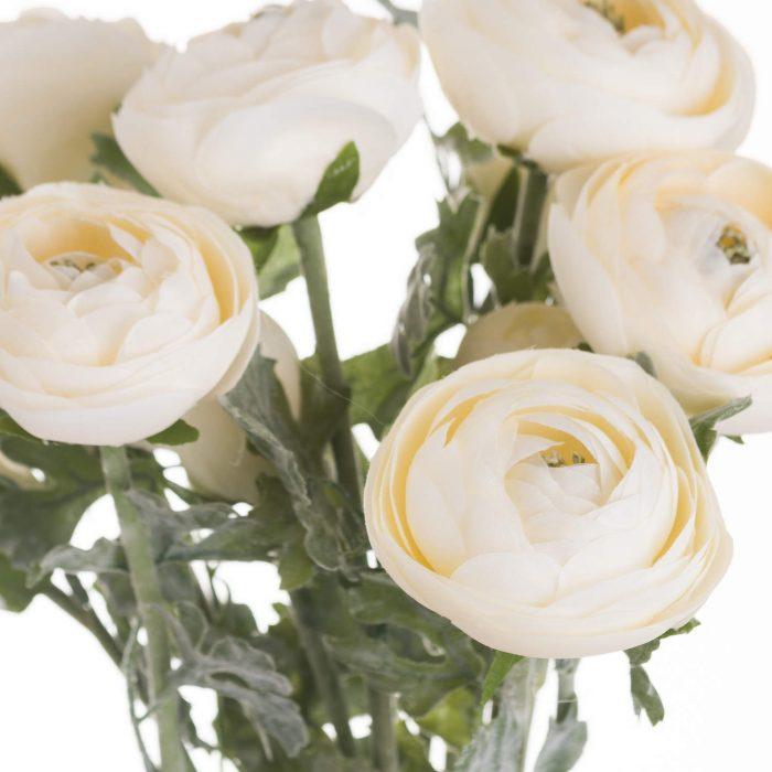 Soft Cream Ranunculus - Cosy Home Interiors