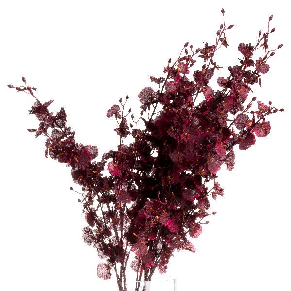 Deep Burgundy Orchid Spray - Cosy Home Interiors