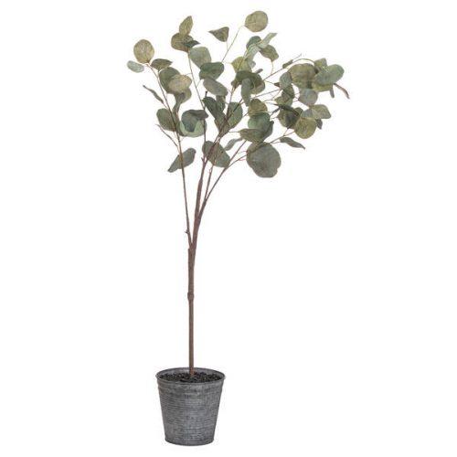 Eucalyptus Tree In Metalic Pot - Cosy Home Interiors