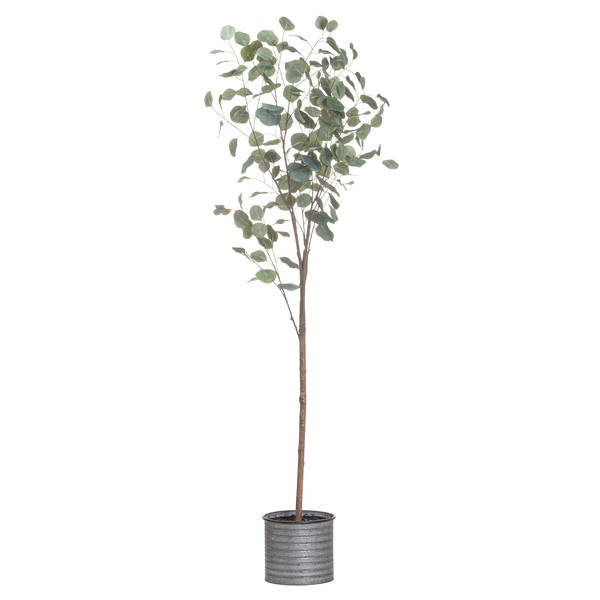 Large Eucalyptus Tree In Metalic Pot - Cosy Home Interiors