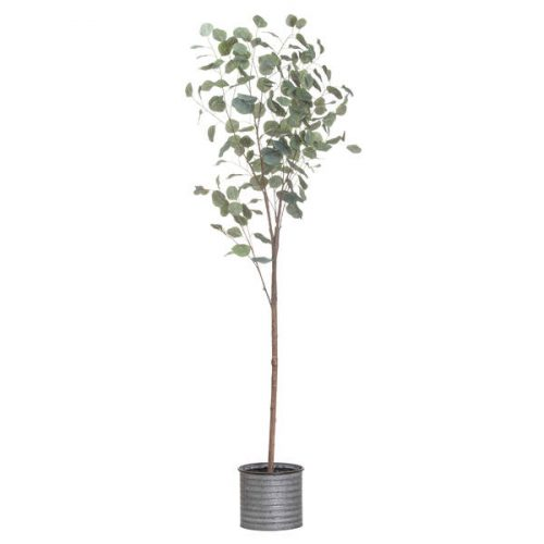 Large Eucalyptus Tree In Metalic Pot - Cosy Home Interiors