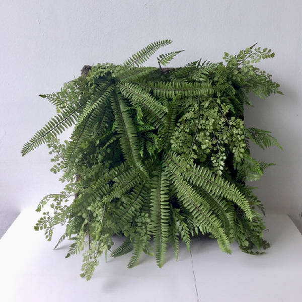 Fern And Greenery Wall Panel - Cosy Home Interiors