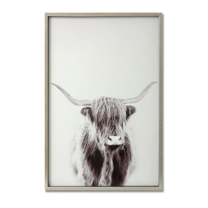 Highland Cow Right Facing Glass Image with Silver Frame - Cosy Home Interiors