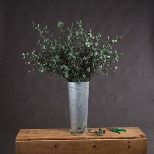 Tall Eucalyptus Stem - Cosy Home Interiors