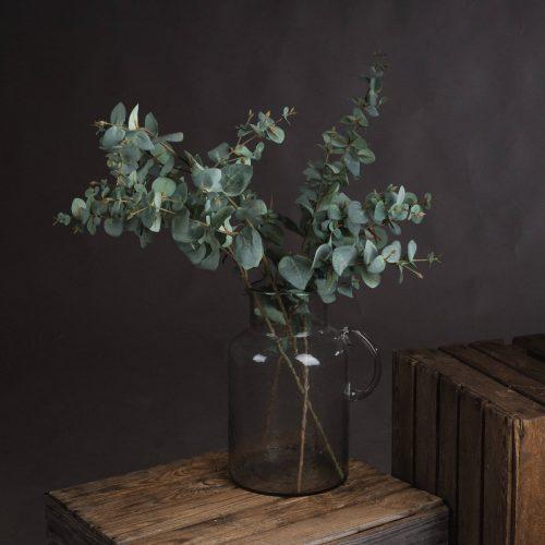 Variegated Eucalyptus - Cosy Home Interiors