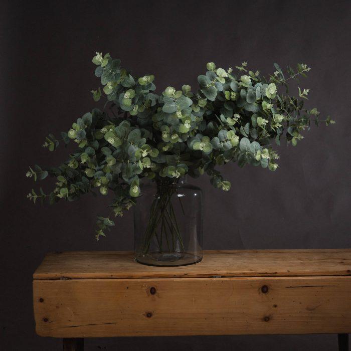 Eucalyptus Spray - Cosy Home Interiors