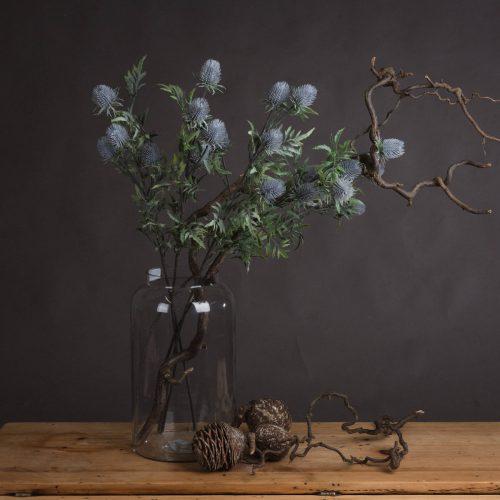 Eryngium Blue Thistle - Cosy Home Interiors