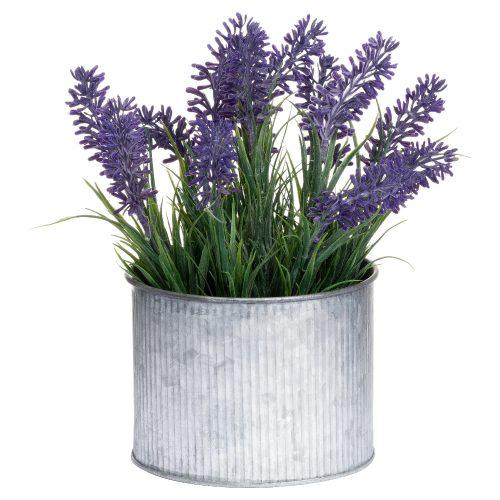 Lavender In Mini Dolly Tin - Cosy Home Interiors