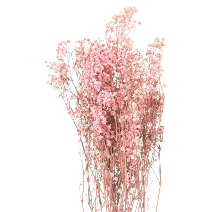 Dried Pale Pink Babys Breath Bunch - Cosy Home Interiors
