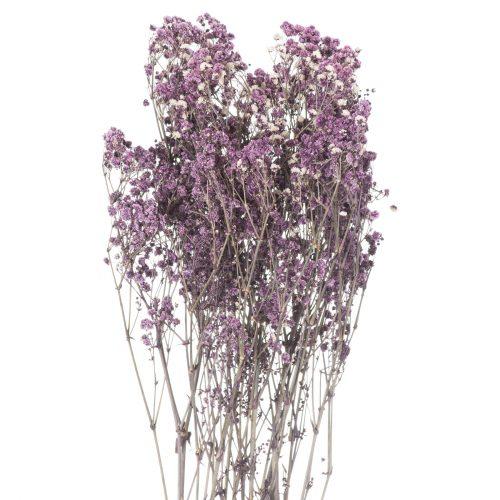 Dried Purple Babys Breath Bunch - Cosy Home Interiors
