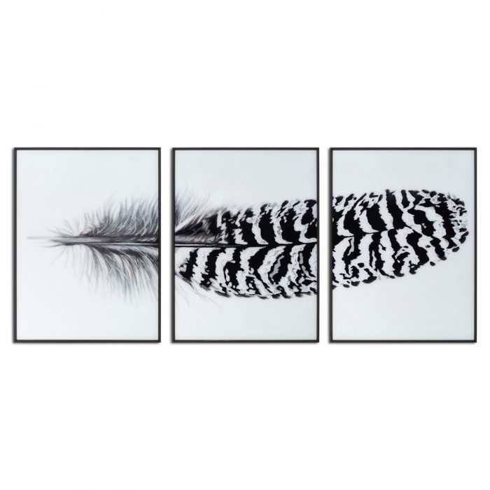 Black Striped Feather Over 3 Black Glass Frames - Cosy Home Interiors